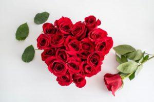 nhung-bo-hoa-hong-tang-nguoi-yeu-ngay-14-2-happy-valentine-day-14