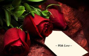 nhung-bo-hoa-hong-tang-nguoi-yeu-ngay-14-2-happy-valentine-day-16