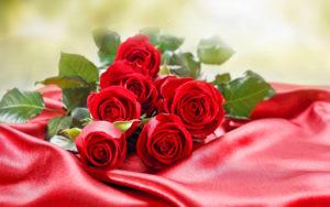 nhung-bo-hoa-hong-tang-nguoi-yeu-ngay-14-2-happy-valentine-day-18