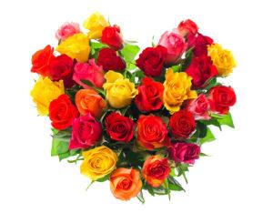 nhung-bo-hoa-hong-tang-nguoi-yeu-ngay-14-2-happy-valentine-day-20