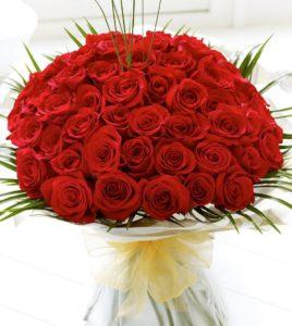 nhung-bo-hoa-hong-tang-nguoi-yeu-ngay-14-2-happy-valentine-day-4