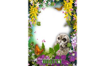 Share psd khung ảnh thiên nhiên hoang dã đẹp