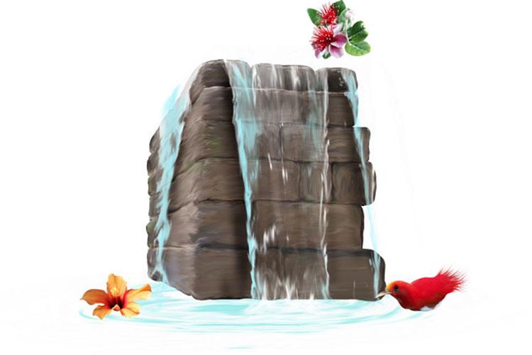 Chia sẻ mọi người tài nguyên png nước và sinh vật cảnh đẹp