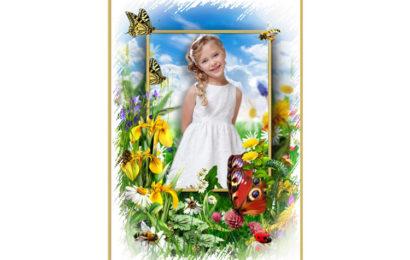 Chia sẻ file psd thiết kế khung ảnh phong cảnh và động vật cho bé