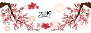 Tuyển tập 20 cover, ảnh bìa facebook chúc mừng năm mới 2019 kỷ hợi số 1