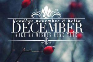 20 cover, ảnh bìa chào tháng 12 - Hello December độc đáo cho facebook