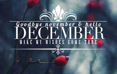 20 cover, ảnh bìa chào tháng 12 – Hello December độc đáo cho facebook