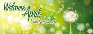 Tổng hợp ảnh bìa chào tháng 4 của ngày đầu hạ số 15