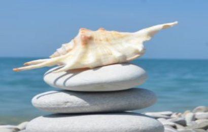 Top hình nền hòn đá (stone) trên bãi biển đẹp điện thoại Oppo A92